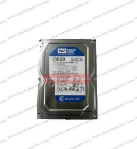 Harddisk Internal Western Digital Canviar 250 GB